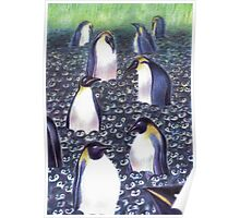 Penguins protect Poster