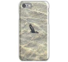 Wedge-Tailed Eagle Soaring iPhone Case/Skin