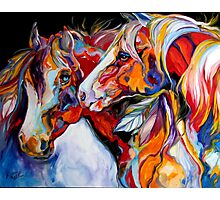 TWO SPIRITS EQUINE SOUTHWEST ORIGINAL by MARCIA BALDWIN Photographic Print