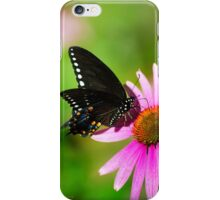 Colorful Butterfly in the Sun iPhone Case/Skin