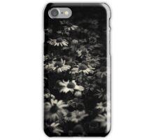 Daisies iPhone Case/Skin