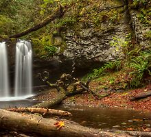 STOCKING CREEK FALLS by Sandy Stewart