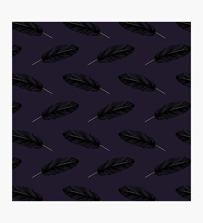 Corvus Quill Photographic Print