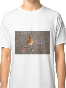 Female Northern Cardinal Classic T-Shirt
