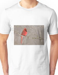 Male Northern Cardinal T-Shirt