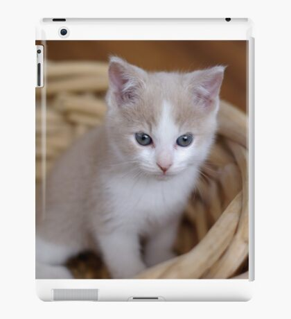 Kitten in a Basket iPad Case/Skin