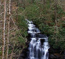 Soco Falls ll by Christine Annas