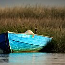 Cape Cod Eastham, Boat Meadow - Blue Boat by Artist Dapixara