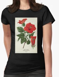 Favourite flowers of garden and greenhouse Edward Step 1896 1897 Volume 1 0156 Shoe Flower Womens Fitted T-Shirt