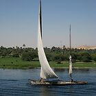 Cruising the Nile by apple88