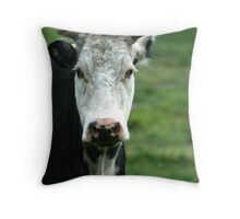 Grumpy old cow! Throw Pillow