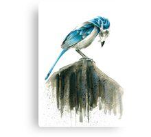 Bird Evolution Canvas Print