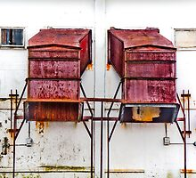 Matched Pair by Peter Maeck