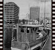BW Trawlers in Hobart Constitution dock by tassiedevil