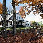 Autumn - Roundstone Farmhouse by T.J. Martin