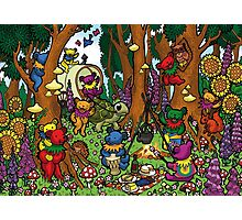 Grateful Dead Dancing Bears - Teddy Bears Picnic Photographic Print