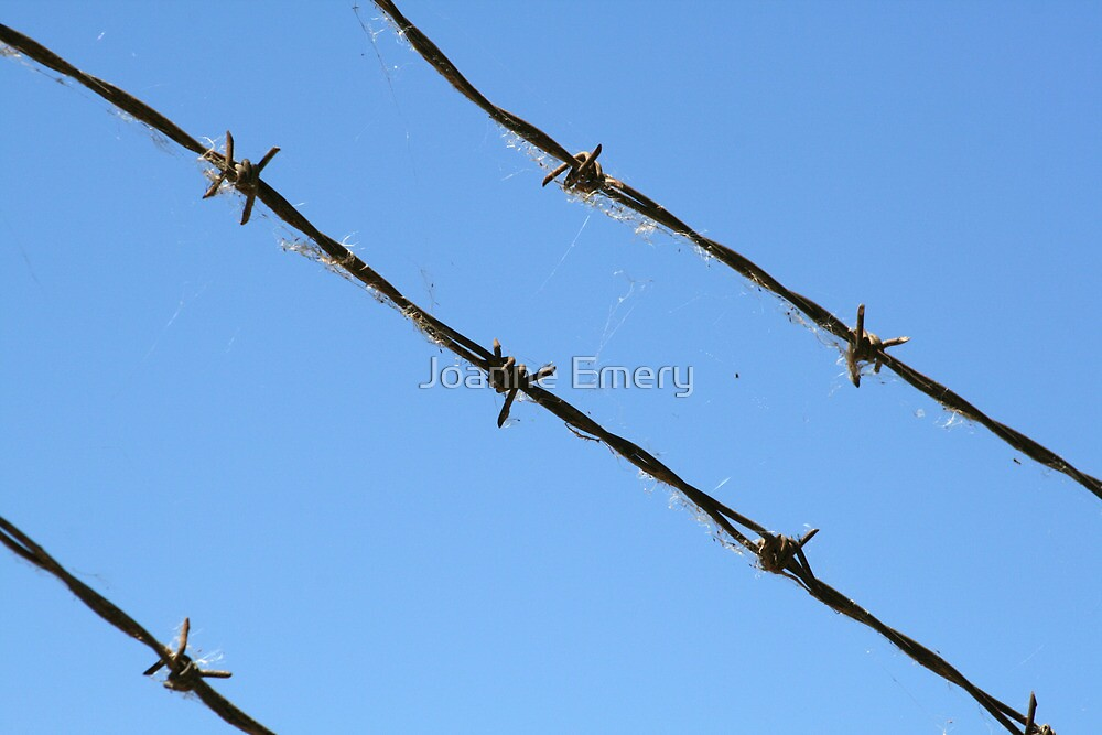 Barbed wire by Joanne Emery