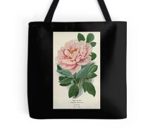 Favourite flowers of garden and greenhouse Edward Step 1896 1897 Volume 1 0003 Tree Peony Tote Bag