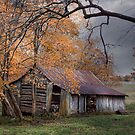 Shenandoah cabin by bettywiley