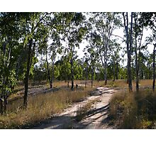 Bush Road to Boondooma Dam Photographic Print