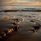 seashore by trudybabe