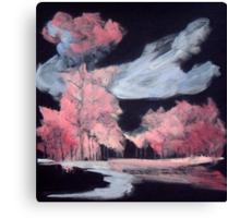 14 Canvas Print