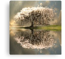 The Glory of Spring Canvas Print