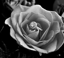 Will you Marry me.... by Laura  Donnell