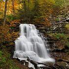 Erie Falls (Autumn) by Tim Devine