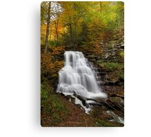 Erie Falls (Autumn) Canvas Print