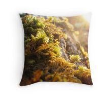 Quiet Sunset On Haloed Moss Throw Pillow