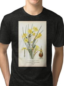 Favourite flowers of garden and greenhouse Edward Step 1896 1897 Volume 4 0111 Jonquil and Daffodil Tri-blend T-Shirt