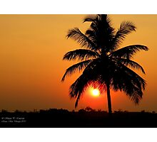 Palm Sunset Photographic Print