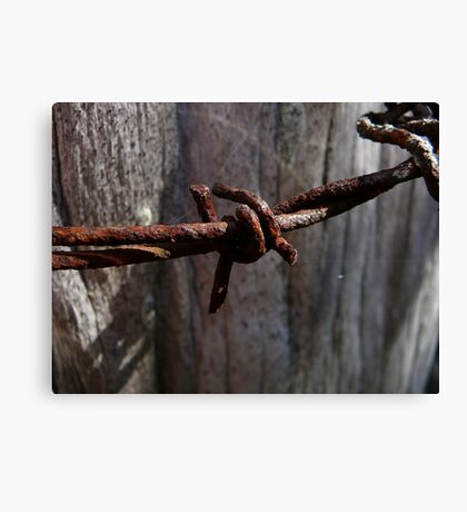 Rusty Barbed Wire Canvas Print