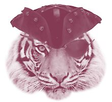 Tiger Pirate Photographic Print