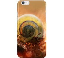 Morning impression with small shell iPhone Case/Skin