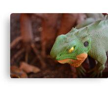 The Coloured Reptile Canvas Print