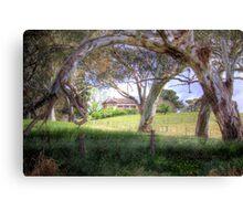 Princess Highway Farm - Nairne, Adelaide Hills, South Australia Canvas Print