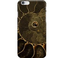 An Ancient Treasure III iPhone Case/Skin
