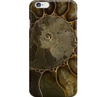 An Ancient Treasure IV iPhone Case/Skin