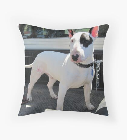 pure bred english bull terrier Throw Pillow