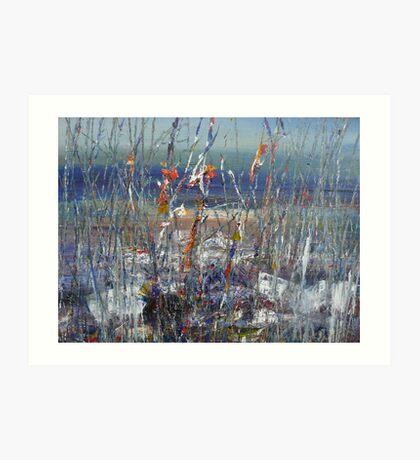 Cultivate-Rottnest Island Art Print
