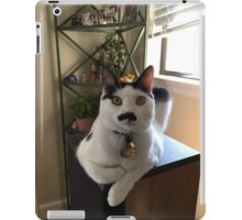 Mustache Cat on Stereo  iPad Case/Skin