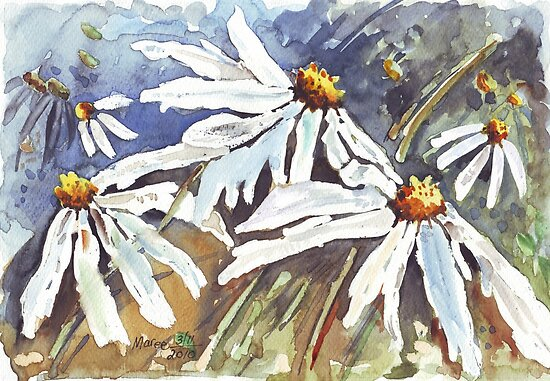 Daisy Love in Summer by Maree  Clarkson