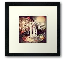 Whispers in the Woods: Boothbay, Maine Framed Print