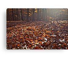 The Autumn Lights Symphony. by Brown Sugar. Views (164) Thx! Canvas Print