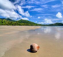 Cape Tribulation HDR by Ryan Pedlow