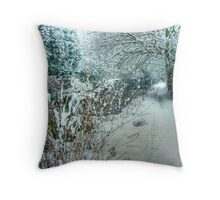 Winter on the Canal - HDR Throw Pillow