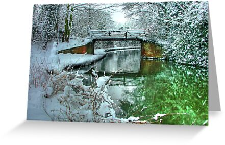 Winter at Murray`s Bridge with Snow Fisherman !! - HDR by Colin  Williams Photography
