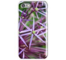 Star Spangled Fields iPhone Case/Skin